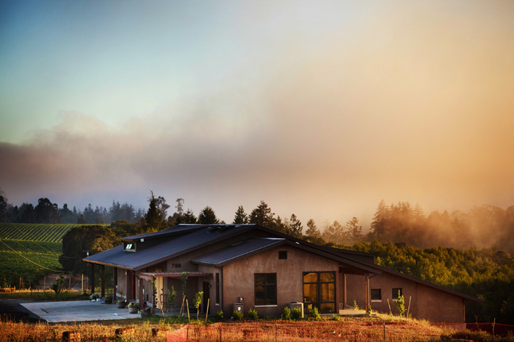 Photo courtesy of Littorai Wines | Archer's Favorite Wine Country Wineries: Red Wine | Archer Hotel Napa