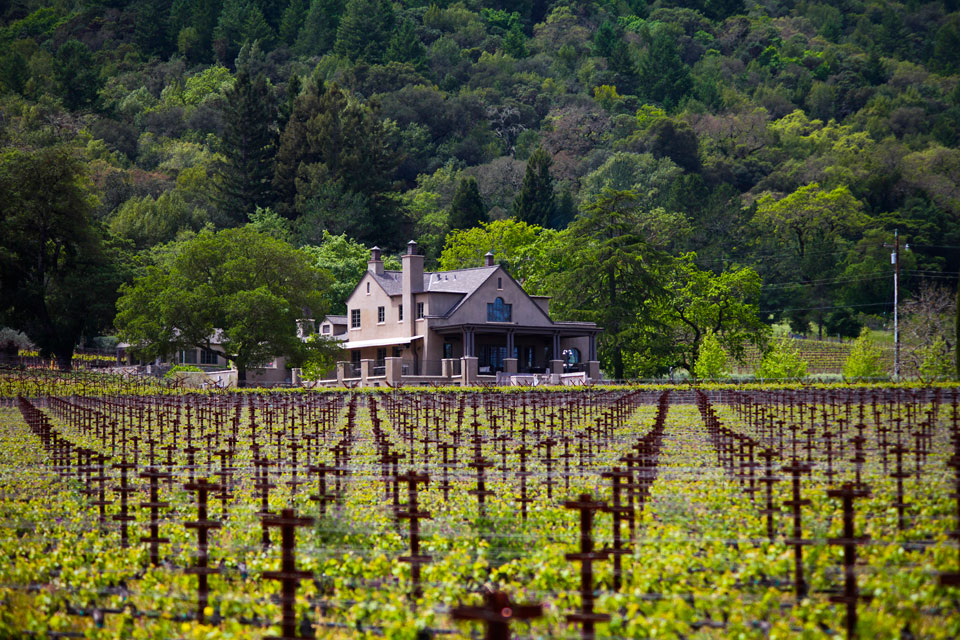 Staglin Family Vineyard | White Wine Archer Hotel Napa