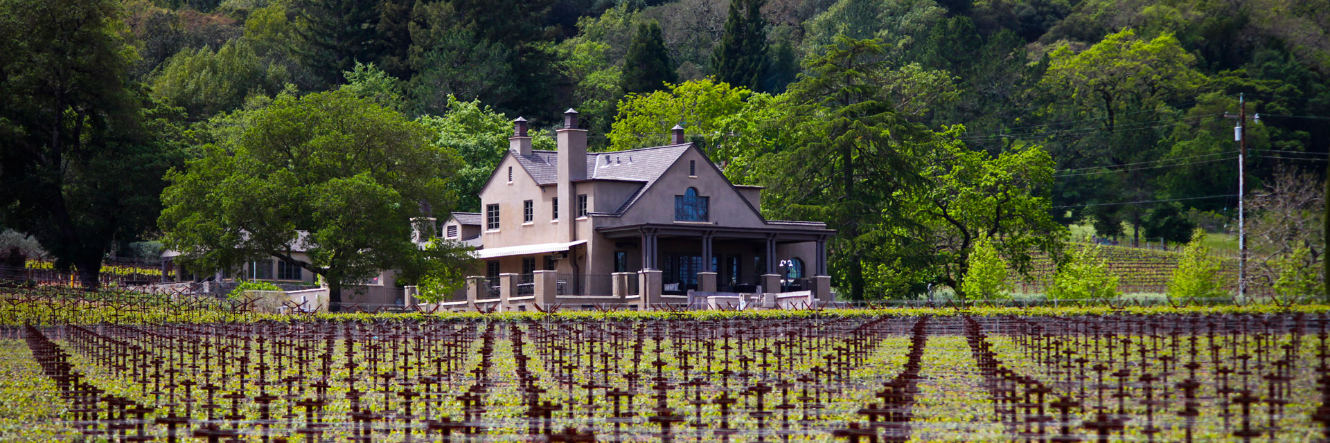 Photo courtesy of Staglin Family Vineyard | Archer's Favorite Wine Country Wineries: Whites