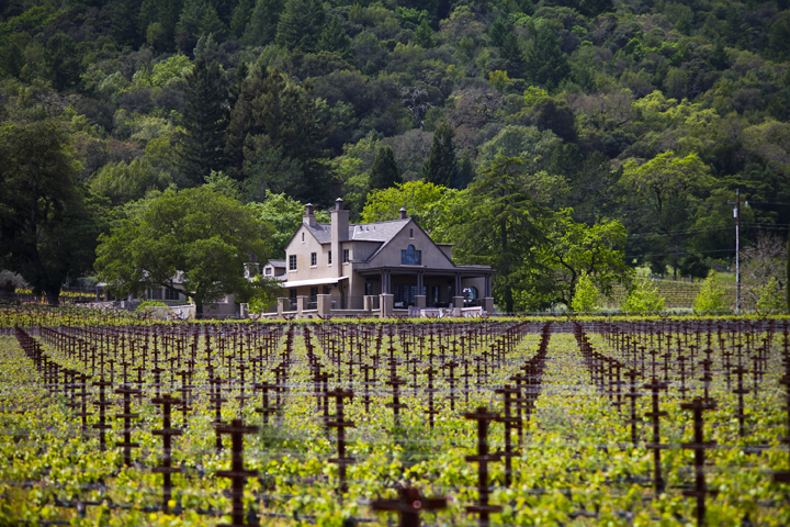 Photo courtesy of Staglin Family Vineyard | Archer's Favorite Wine Country Wineries: Whites | Archer Hotel Napa