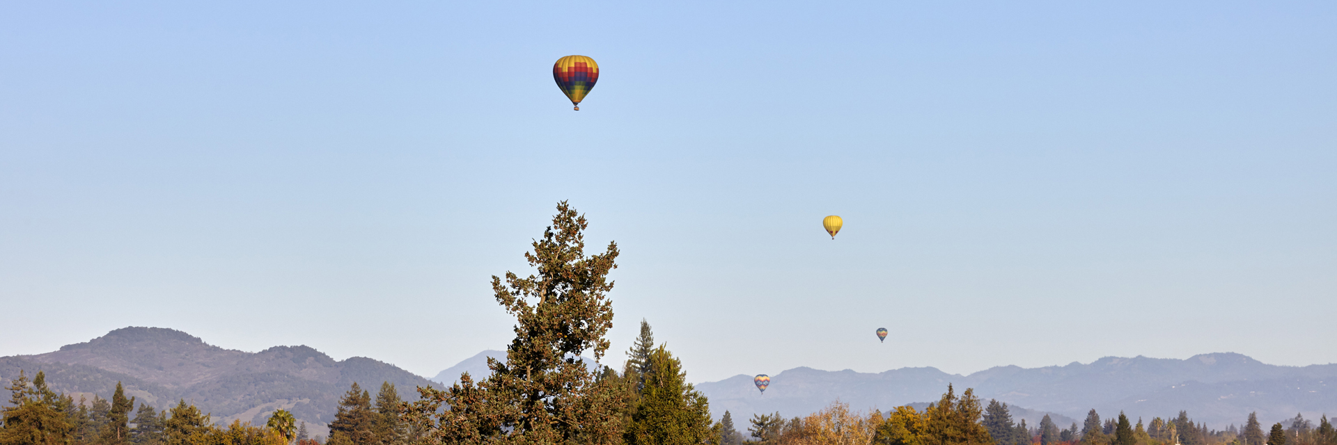 Daytime view of hot-air balloons flying over the valley