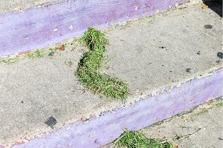 Grass Gesture, 2013 — Print by Bobby Scheidemann