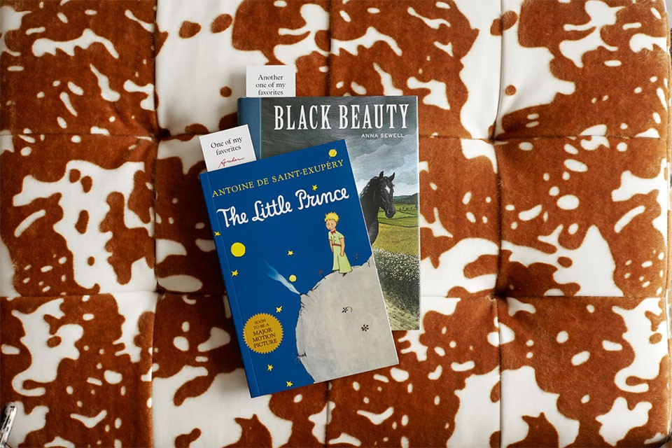 Two Texas-inspired books on cowhide print