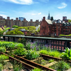 High Line Park New York }