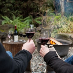 Closeup of a man and woman's hands holding glasses with red wine and a fire pit in the outdoor background}