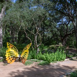 Garden walkway with butterfly-shaped park bench