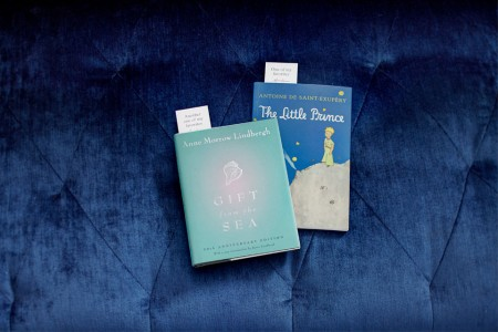 Two New Jersey-inspired books (Gift From The Sea and The Little Prince) on a blue sofa