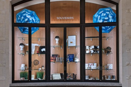 Curated souvenir cabinet lit up