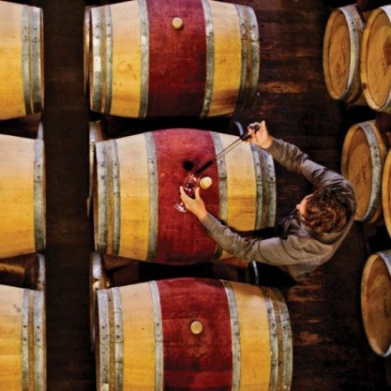 Looking down at a man working in a row of wine barrels
